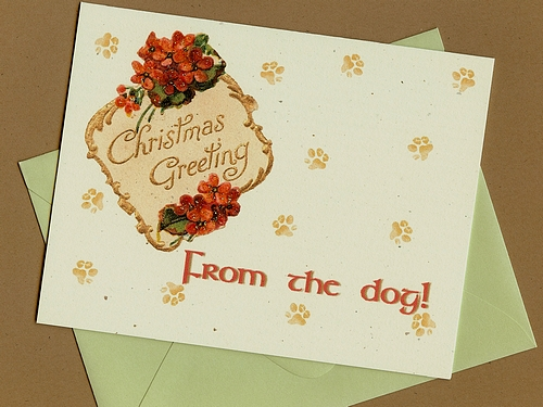 cyber monday etsy from the dog christmas card pet scribbles