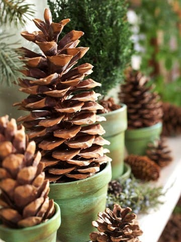 Better Homes and Gardens Easy Decorating with Pinecones