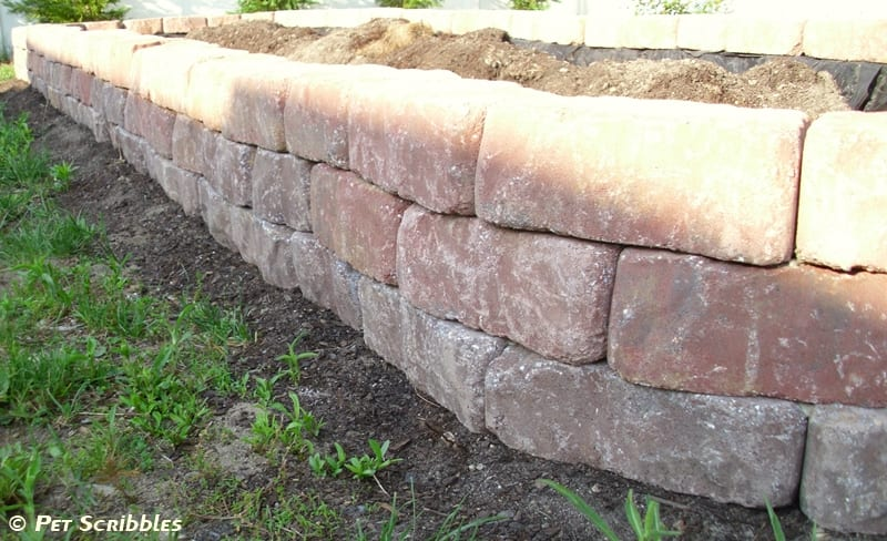 DIY Raised Vegetable Bed, close up of three levels of pavers installed