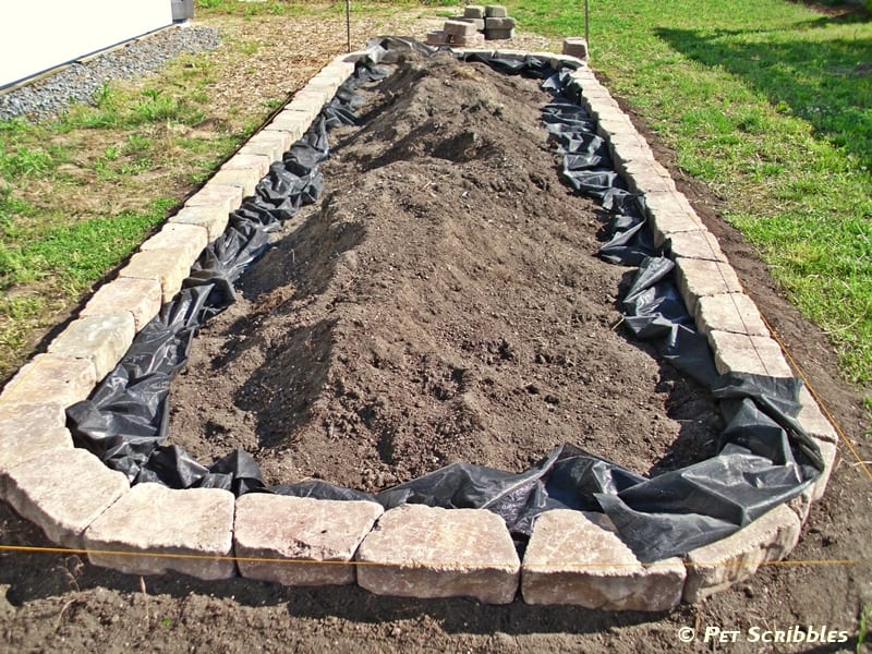 How to Build a Raised Garden Bed | Pet Scribbles