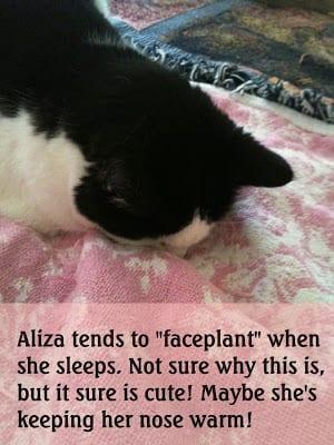 "Aliza doing a ""faceplant"" while she sleeps!"