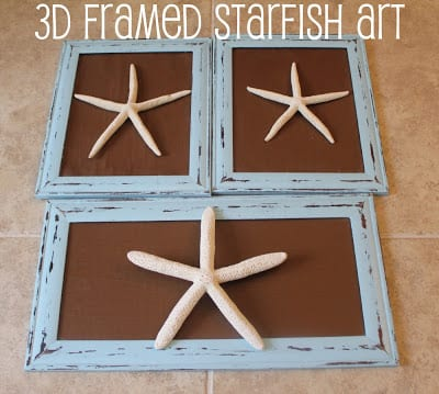3D Framed Starfish Art | Mom Endeavors