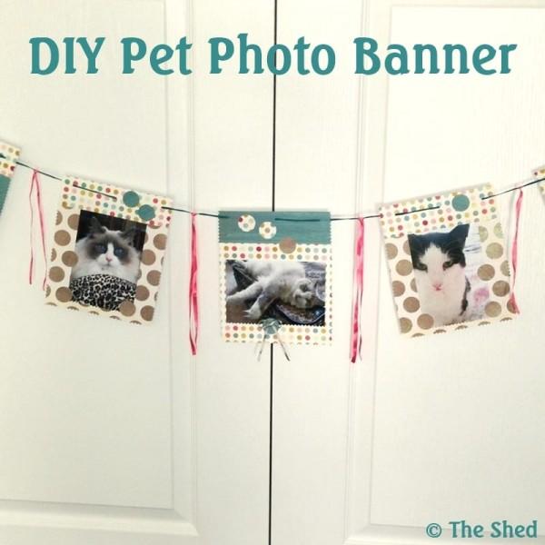 DIY Pet Photo Banner