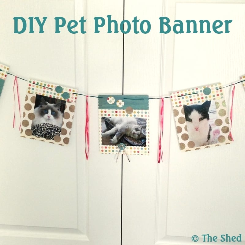 DIY Pet Photo Banner