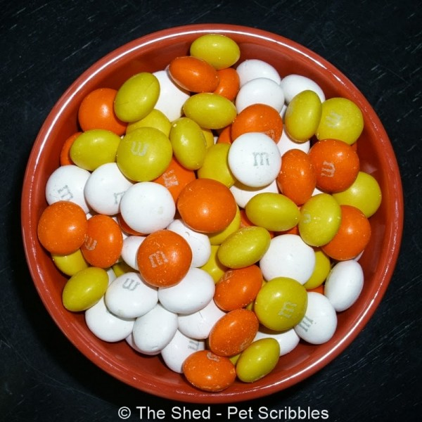 White Chocolate Candy Corn M&M's #HarvestFun #shop