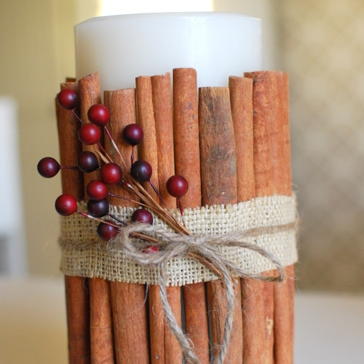 Cinnamon Stick Candle Tutorial | Craftaholics Anonymous