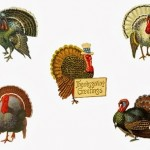 Thanksgiving: Recipes, Crafts, Decor Ideas from your favorite bloggers!