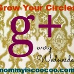 How to grow your circles on Google+