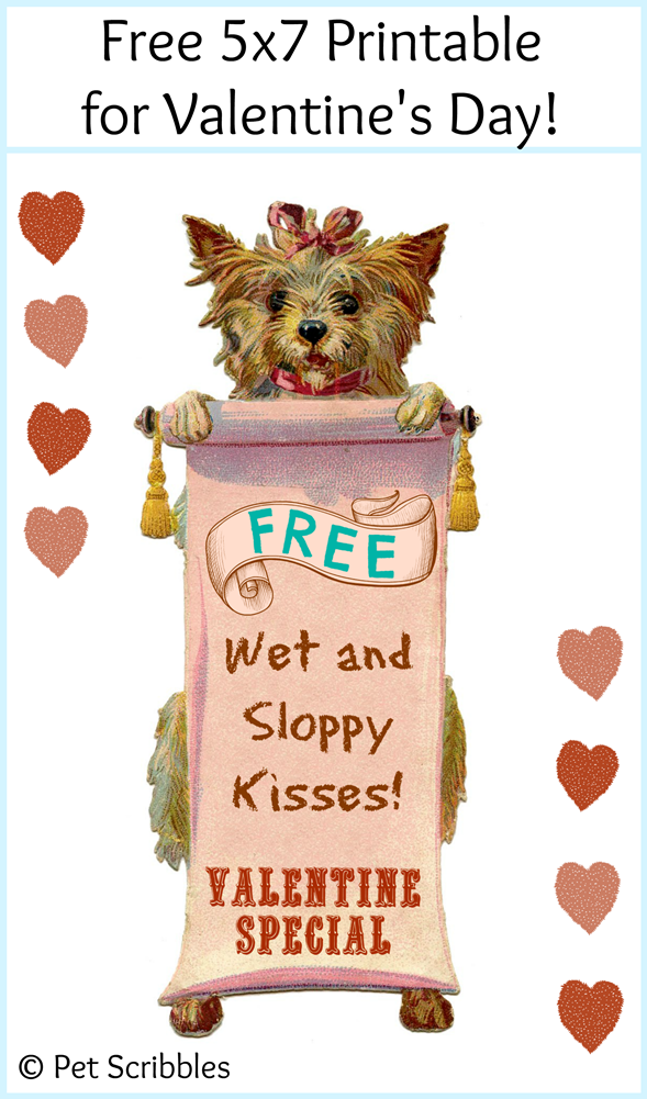 Free Printable Dog Valentine by Pet Scribbles to display or share!