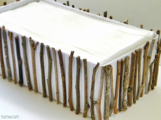 Twig Tissue Box DIY by Homework