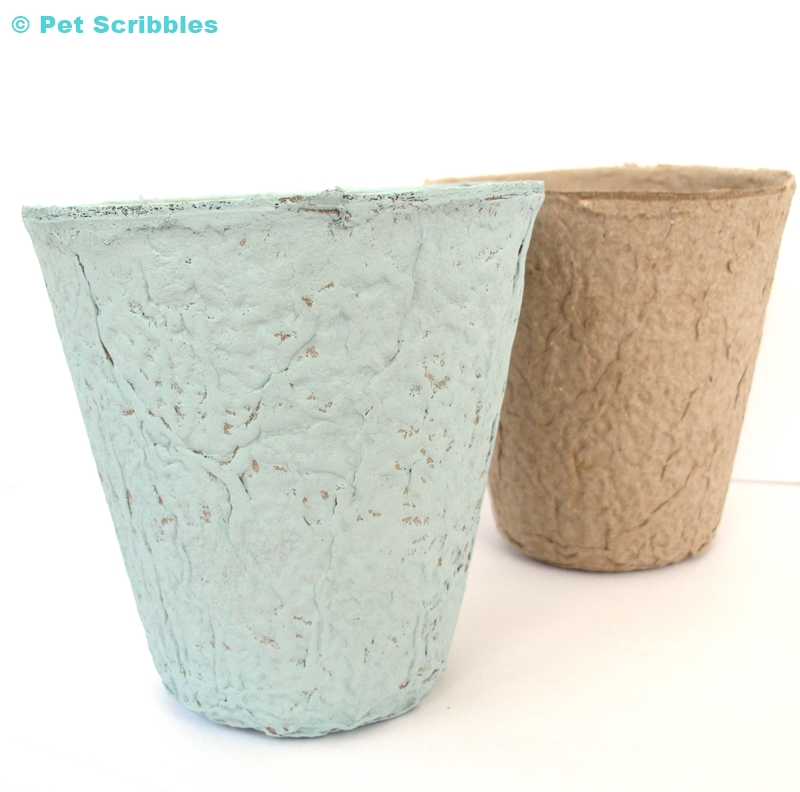 Peat Pot painted with Vintage (color) Chalky Finish Paint by DecoArt.