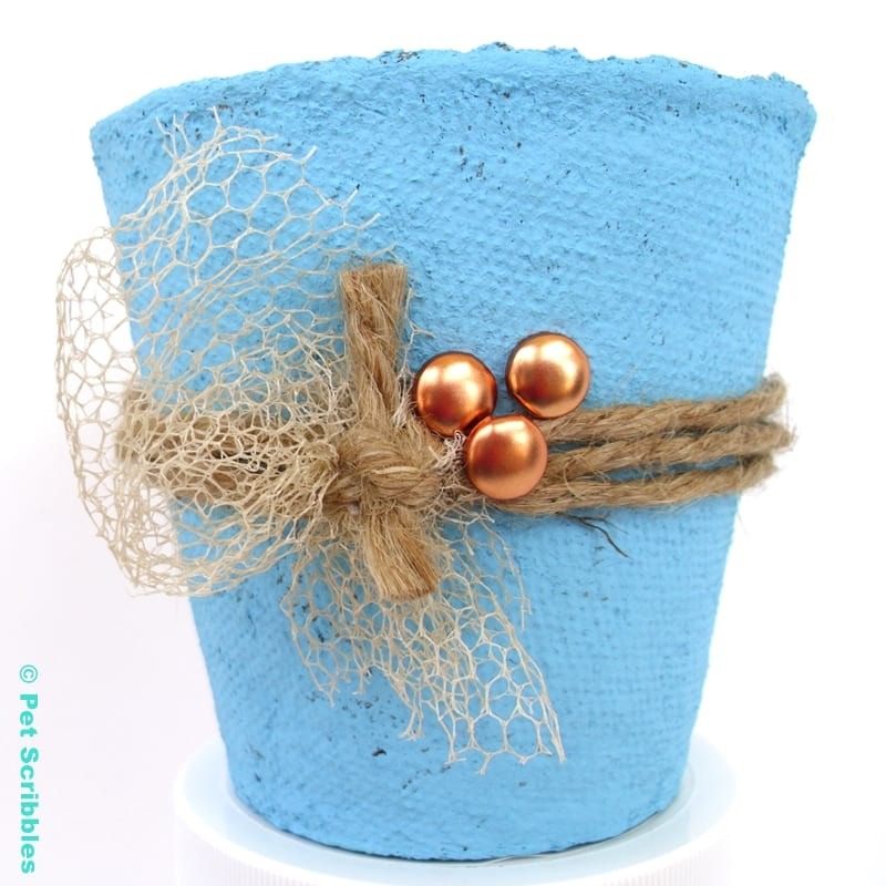 Peat Pot Wedding Favor painted with bright blue chalk paint