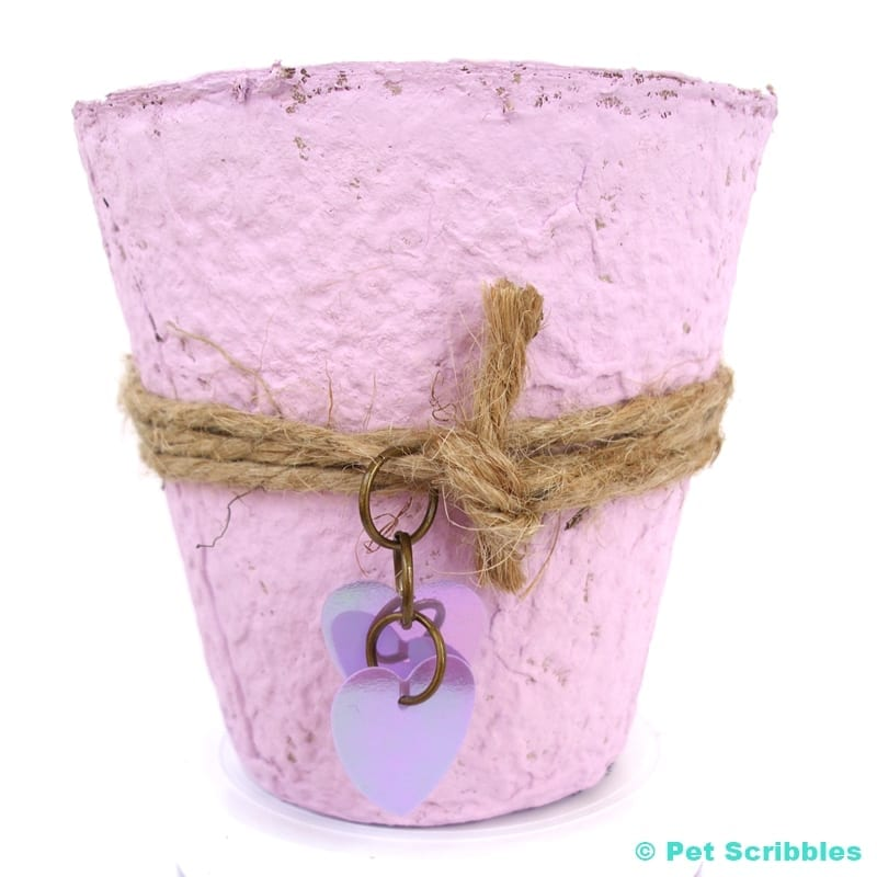 Peat Pot Wedding Favors painted with lavender Chalky Finish Paint