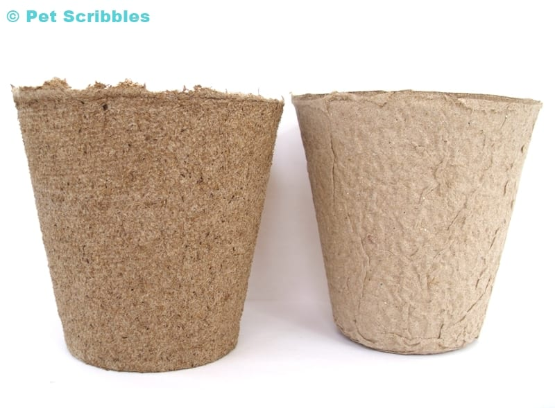 two examples of peat pots