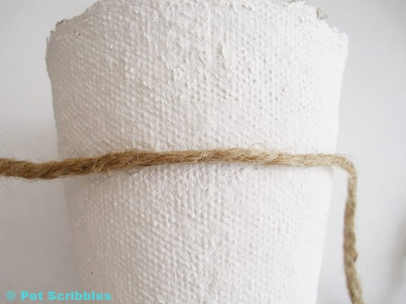 wrapping twine on a peat pot