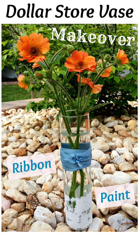 Easy Dollar Store Bud Vase Makeover with paint and ribbon!