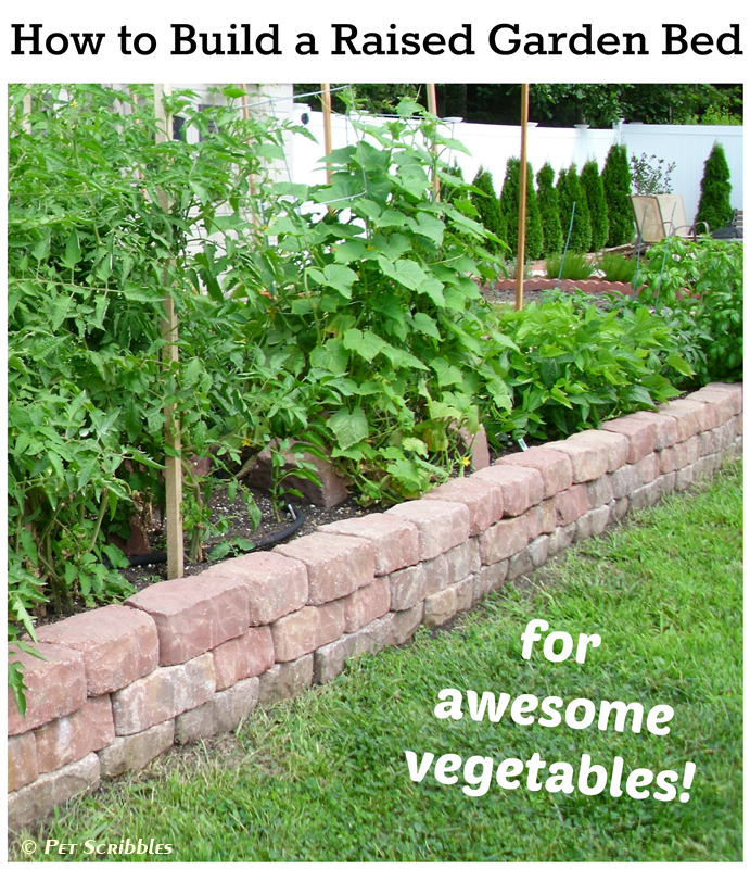 How to Build a Raised Garden Bed for Awesome Vegetables!