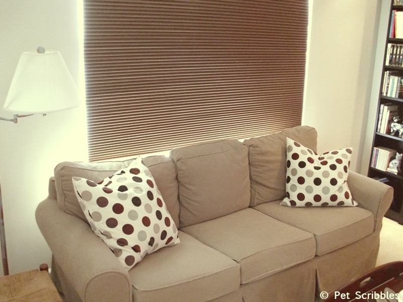 Pottery Barn couch with IKEA pillows