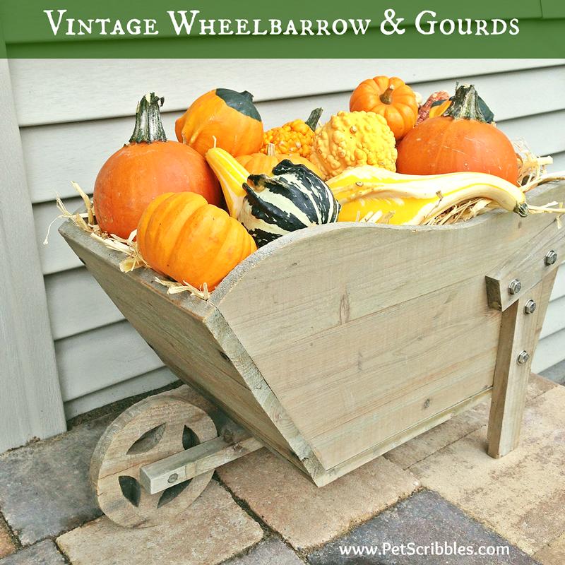 Fall Decor: vintage wheelbarrow and gourds vignette