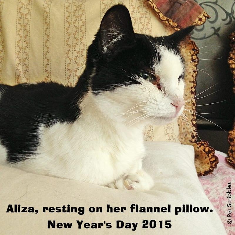 Saying Goodbye to Aliza