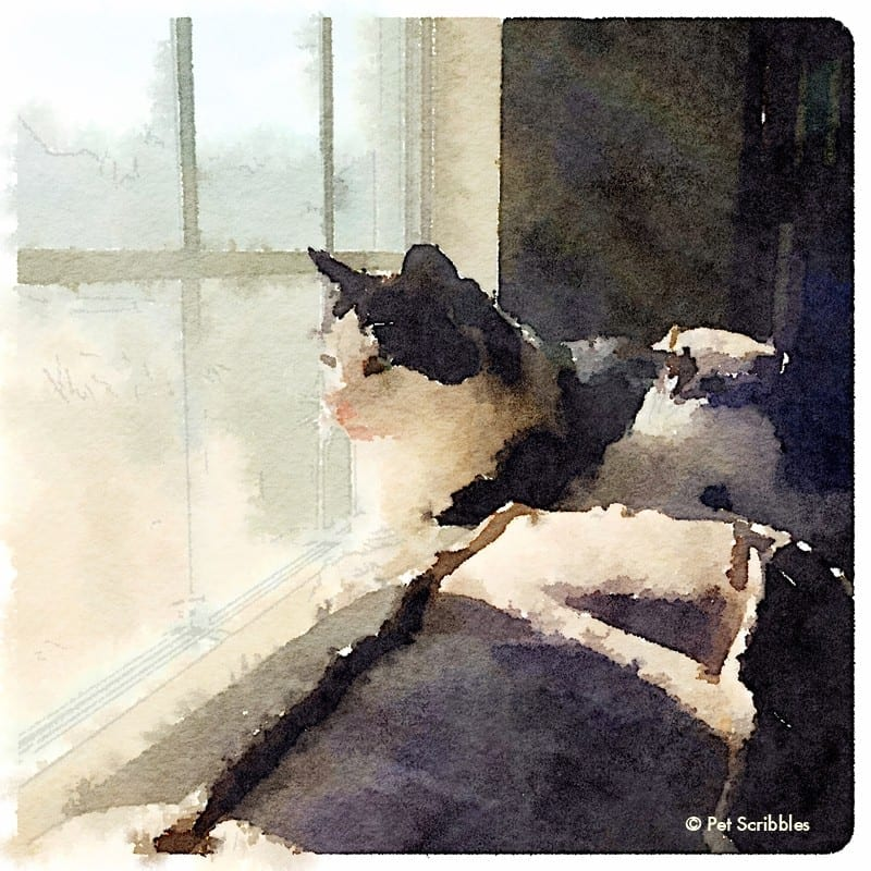 Aliza - painted in Waterlogue app