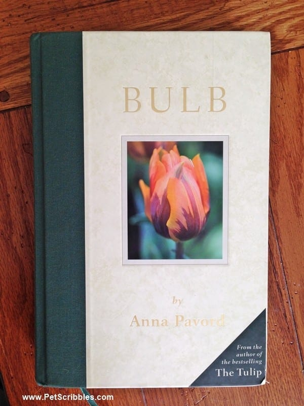 Bulb book by Anna Pavord