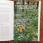 Bulb by Anna Pavord: the ultimate gardening book about bulbs!