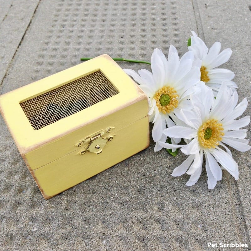 Wooden Box Wedding Favor
