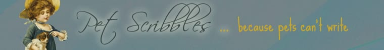 Pet Scribbles old shop banner