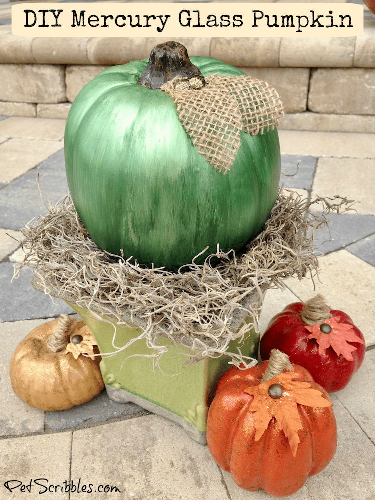 DIY Mercury Glass Pumpkin tutorial using three colors of metallic paint!