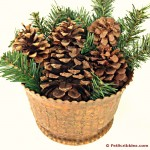 Easy Christmas Centerpiece with Pinecones and Greens