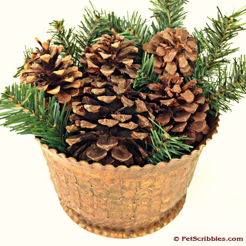 Easy Christmas Decorating with pinecones and greens