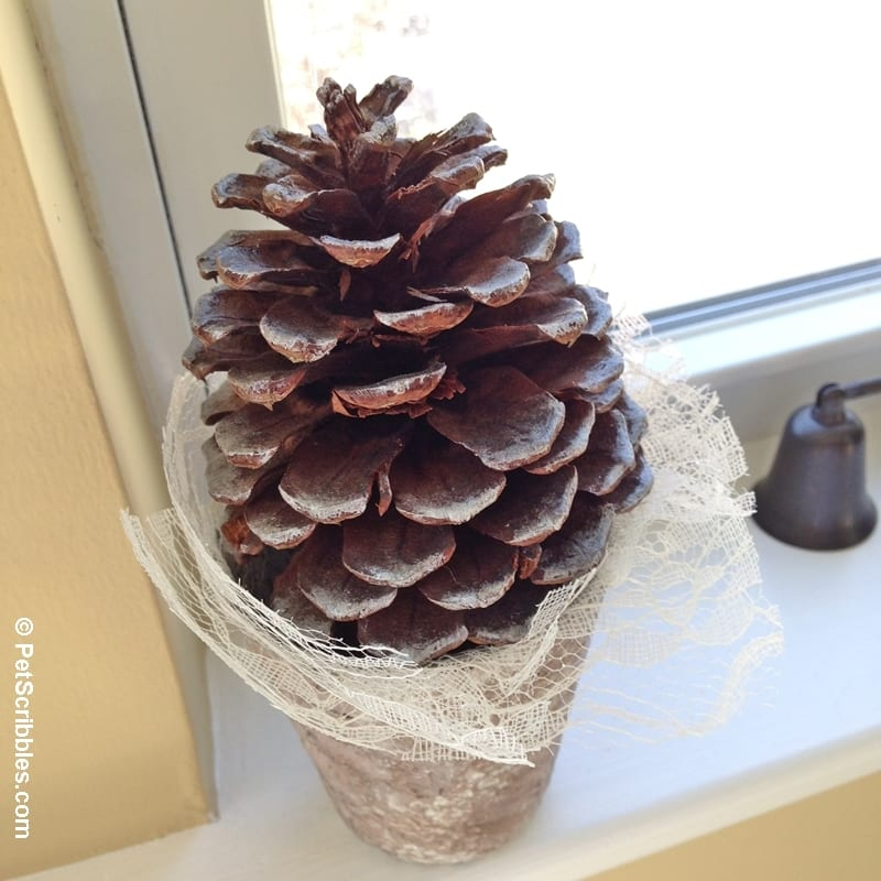 Winter Pinecone Tree