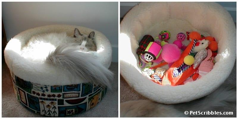 Lulu sleeping with toys