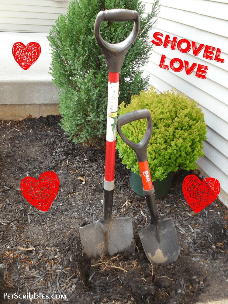 Love my petite garden shovel