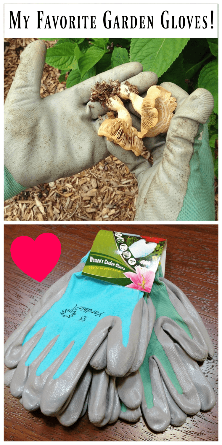 My favorite nitrile gardening gloves are the best! Here's why...