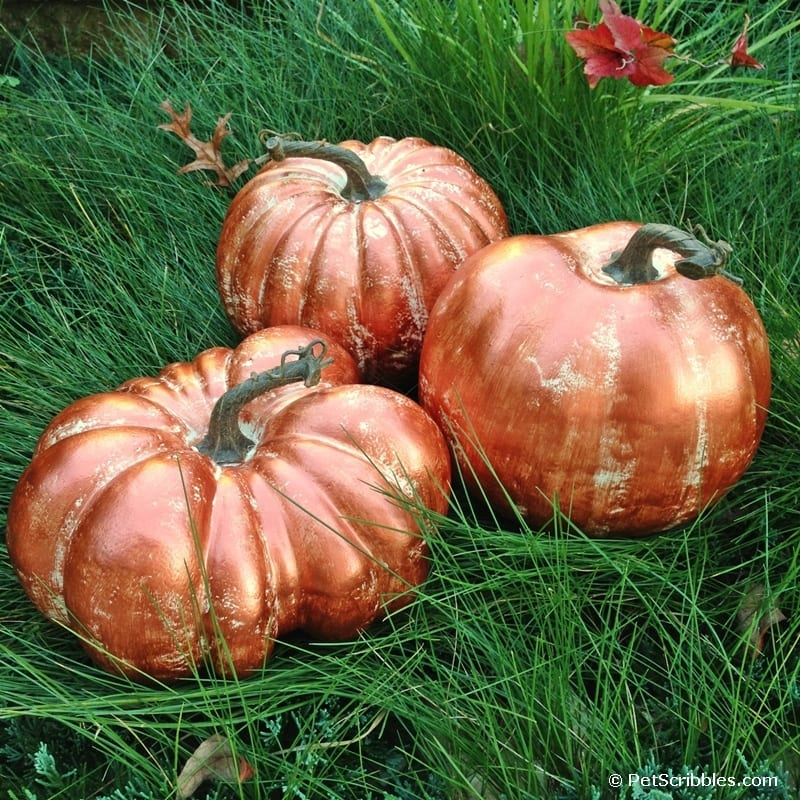 Copper Pumpkins Tutorial
