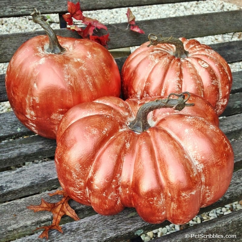 Make Copper Pumpkins with Metallic Paint