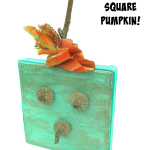 How to make a mini square pumpkin with help from nature!
