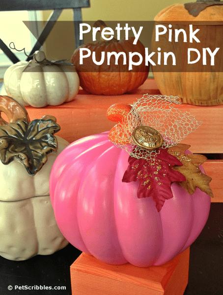 Pretty Pink Pumpkin DIY