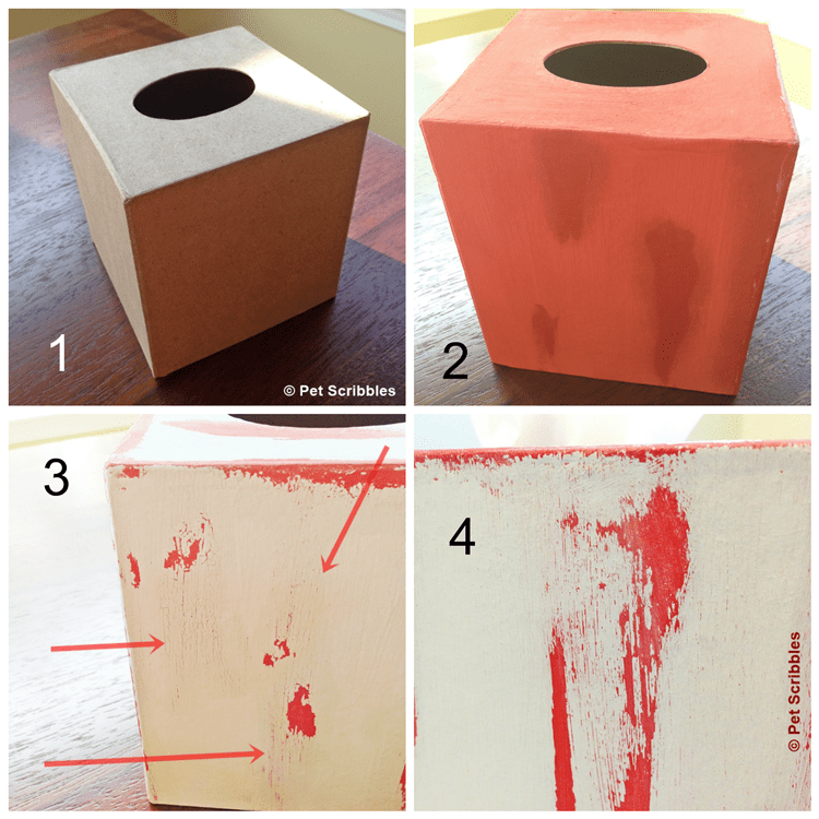 paint a paper mache tissue box