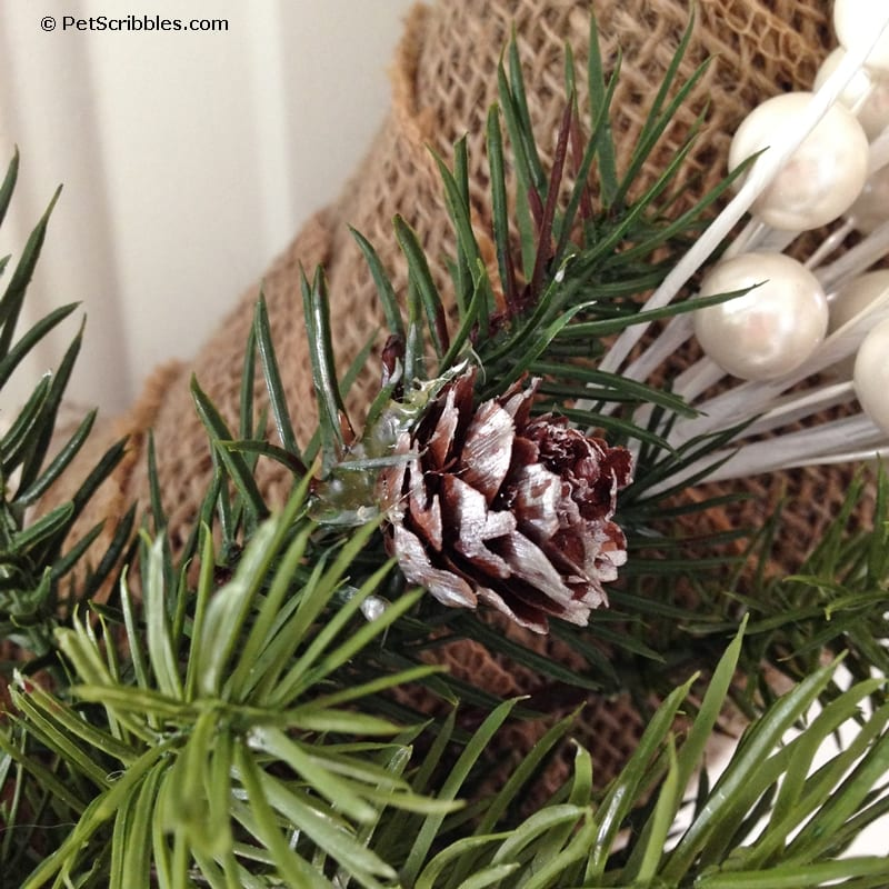 use paint to give pinecones a frosted look