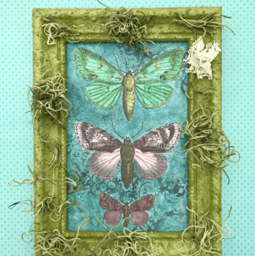 Welcome in Spring with Pretty Painted Butterflies! If you love to color, you'll love this!
