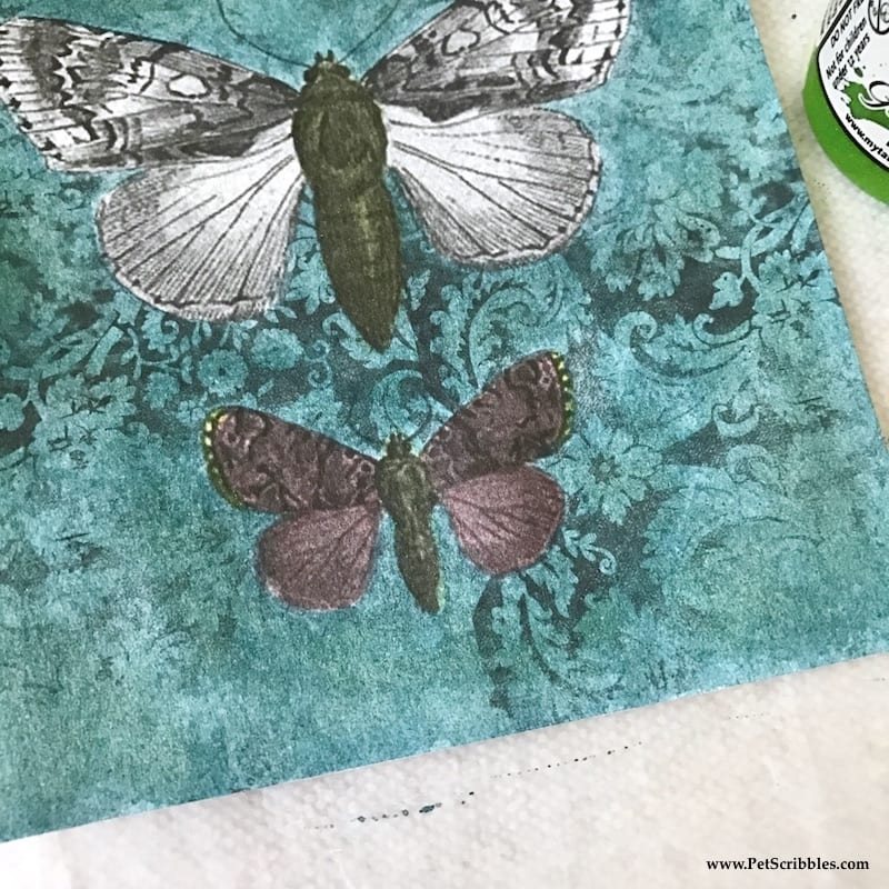 Welcome in Spring with Pretty Painted Butterflies!