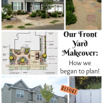 How to plan your dream front yard!