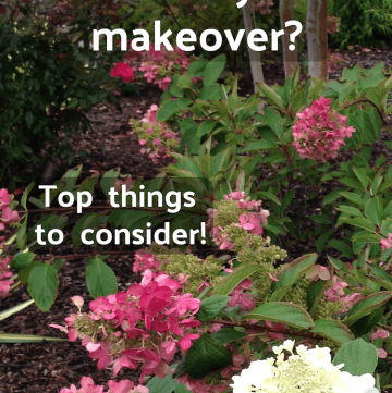 Planning a front yard makeover? Top things to consider, to get your dream yard!