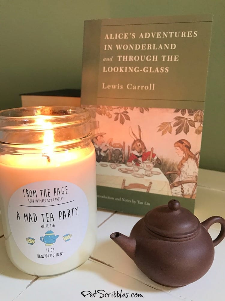 These Literary Candles are Literally Amazing!