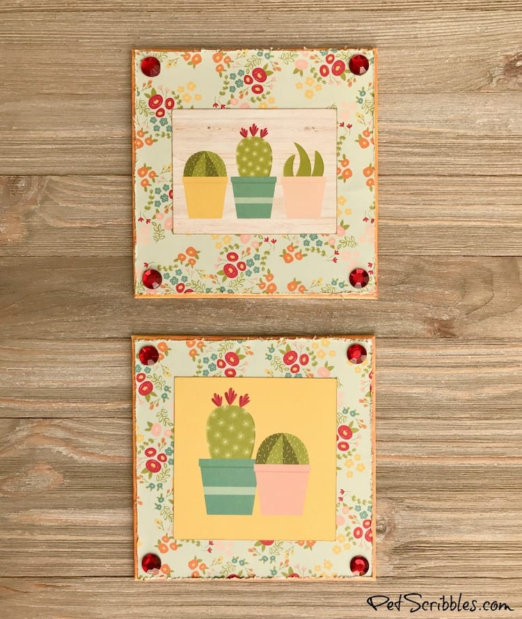 How to create Summer Succulent Cactus Shelf Art