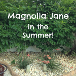 Magnolia Jane in the Summer!