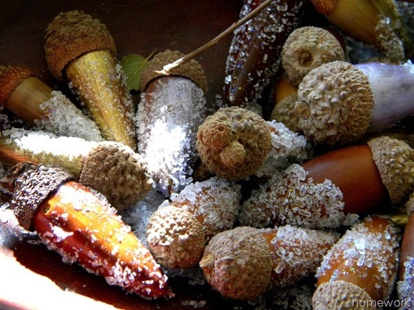 How to Create Acorns in the Snow | Homework